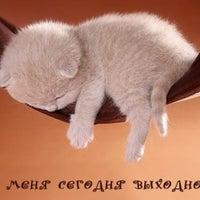Photo taken at Институт Образования by Roza N. on 11/24/2012