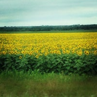 Photo taken at Itasca, TX by Stephanie C. on 6/9/2013