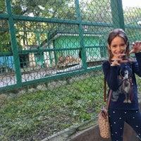 Photo taken at Зоокът by Kaladan on 5/22/2016
