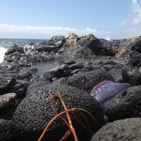 Photo taken at Playa del Confital by Carlos L. on 3/16/2013