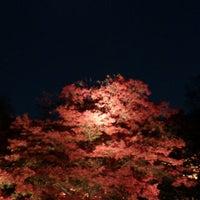 Снимок сделан в Rikugien Gardens пользователем Kota M. 11/27/2012