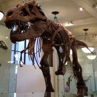 Foto tomada en Museo Americano de Historia Natural por Gavin A. el 6/4/2013