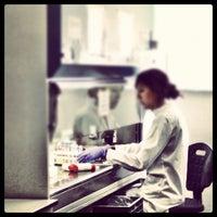 Photo taken at SEMM European School of Molecular Medicine by Roberto A. on 10/19/2012