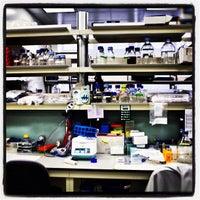 Photo taken at SEMM European School of Molecular Medicine by Roberto A. on 9/24/2012