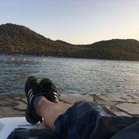 8/23/2017 tarihinde Doğan S.ziyaretçi tarafından Olympos Mocamp Beach Club'de çekilen fotoğraf