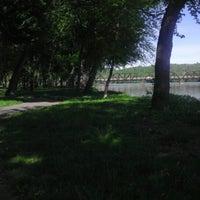 Photo taken at Shikellamy State Park Marina by Greg K. on 5/17/2013