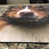 Photo taken at All Pets Vet Hospital by Grace L. on 3/10/2017