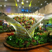 Photo taken at Singapore Changi Airport (SIN) by Petr D. on 7/21/2013