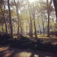 10/26/2013 tarihinde John C.ziyaretçi tarafından Cadman Plaza Park'de çekilen fotoğraf