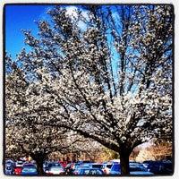 Photo taken at Lenoir-Rhyne University by Brad B. on 3/29/2013