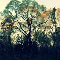Снимок сделан в Дендрологический парк пользователем Lena Z. 5/11/2013
