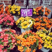 Photo taken at Westborn Flower Market by MyThy H. on 5/21/2013