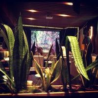 Снимок сделан в Shu Cafe пользователем Mari S. 11/16/2012