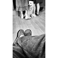 Photo taken at Manheim Pike Veterinary Hospital by Joel W. on 8/29/2013