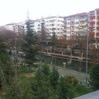 3/9/2013 tarihinde Ebru Ş.ziyaretçi tarafından Serdivan'de çekilen fotoğraf
