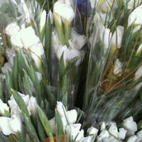 Photo taken at Bodega De Flores Juve by Fernando Y. on 11/3/2012