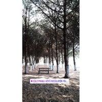 8/4/2018 tarihinde Gizem Ö.ziyaretçi tarafından Süleymanlı Köyü Piknik Alanı'de çekilen fotoğraf