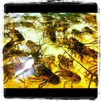 Photo taken at Lobster Alive by Lindsay S. on 10/18/2012