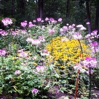 Photo taken at Burtonsville Park by Annie W. on 8/21/2014