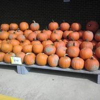 10/24/2012 tarihinde Veronica F.ziyaretçi tarafından Giant'de çekilen fotoğraf