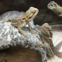 Photo taken at Pet Co by Bulent A. on 4/30/2018