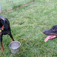 Photo taken at Overlook Dog Park by People of Lancaster e. on 6/28/2014