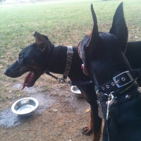 Photo taken at Overlook Dog Park by People of Lancaster e. on 8/10/2013