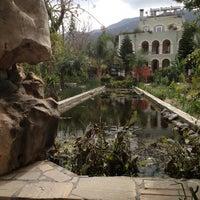 Photo taken at Babil's Garden by Gamze P. on 3/3/2013