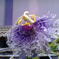 Photo taken at STMIK AMIKOM Yogyakarta by Hanifah P. R. on 11/13/2012