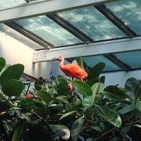 Photo taken at Aquatic Bird House by Iris L. on 8/21/2013