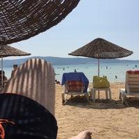 8/23/2017にHikmet K.がADÜ Plajiで撮った写真
