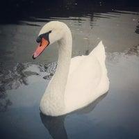 Снимок сделан в Парк Лазаря Глобы пользователем Serg R. 10/25/2012