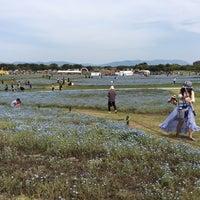 Foto diambil di Uminonakamichi Seaside Park oleh yuki pada 5/5/2018