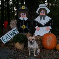 Photo taken at Dawggy Day Care by helen b. on 11/2/2011