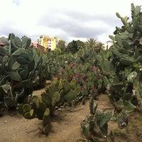 Foto tomada en Parque de La Paloma por Adrian el 4/17/2011