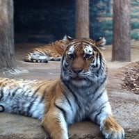 Photo taken at Milwaukee County Zoo by Brian B. on 4/2/2011