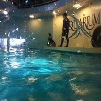 Photo taken at Aquarium of Niagara by Steven R. on 4/9/2011