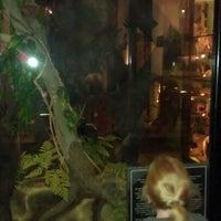 Photo taken at Ipswich Museum by Dan S. on 1/21/2012