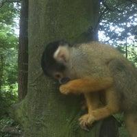 Photo taken at Café Lazy Monkey by KArel F. on 6/29/2012