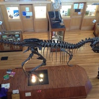 Photo taken at Musée Redpath Museum by Eric D. on 3/11/2012
