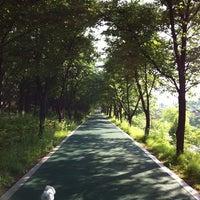 Photo taken at Yangjaechun Trails by Yaejin K. on 5/23/2012