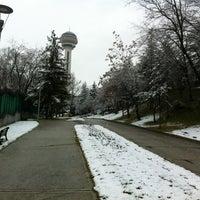 12/24/2011 tarihinde Inal A.ziyaretçi tarafından Botanik Parkı'de çekilen fotoğraf