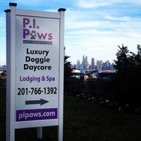 P.I. Paws