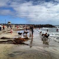 Photo taken at Ocean Beach Dog Beach by Chris C. on 8/25/2012