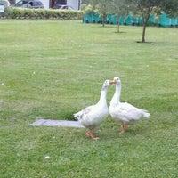 Foto tomada en Parque de la Felicidad por Sofi el 2/9/2012