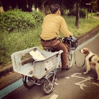 Photo taken at Komazawa Olympic Park by Masa T. on 5/12/2012