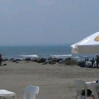 รูปภาพถ่ายที่ Mocambo โดย Ful G. เมื่อ 4/6/2012