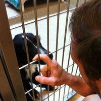 Photo taken at Northeast Animal Shelter by Stephen D. on 8/21/2012