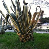 Photo taken at Giardini Gilberto Govi by Davide R. on 12/1/2012