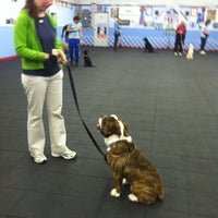 Photo taken at Golden Rule School For Dogs by Geneo on 9/26/2012